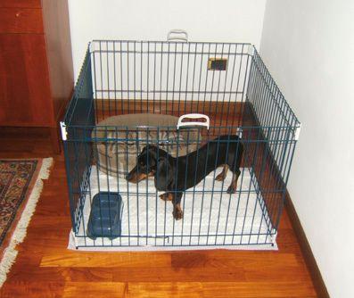 Ferplast ohrádka pre psa Dog Training