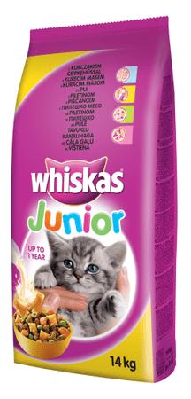 Whiskas Junior csirkehúsos szárazeledel 14 kg