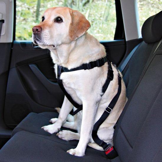 Trixie Bezpečnostný postroj do auta S