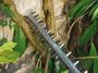 3 - Bosch električne škare za živicu AHS 45-26 (0600847E00)