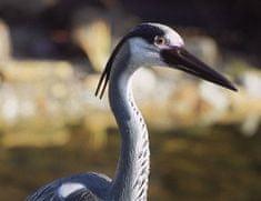 Pontec Heron Szürke gém kerti szobor