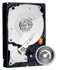 Western Digital tvrdi disk Caviar Black 1TB (WD1003FZEX)