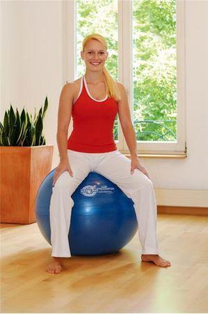 Sissel Žoga Exercice Ball, 55 cm Modra