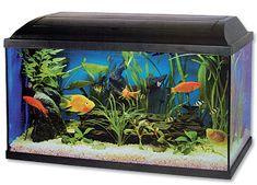 Cat-Gato PACIFIC akvárium szett, 54 l