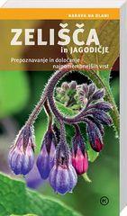 Helga Hoffmann: Zelišča in jagodičje - narava na dlani