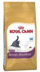Royal Canin sucha karma dla kociąt British Shorthair 34 - 10kg