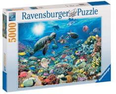 Ravensburger Korallzátony puzzle, 5000 db-os