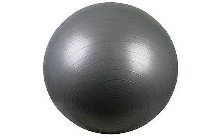 Avenio žoga za vadbo, 65 cm srebrna