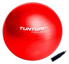 Tunturi Gymnastická lopta 65cm s pumpičkou