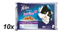 Felix mokra hrana za mlade mačke Fantastic, piščanec in losos, 10 x (4x100g)