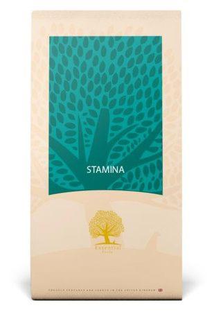 Essential foods hrana za odrasle pse Stamina, 12,5 kg