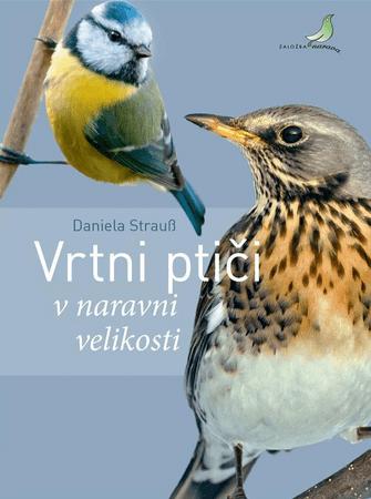 Daniele Strauss: Vrtni ptiči: V naravni velikosti