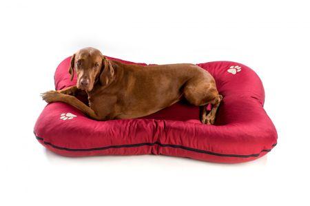Argi Premium Matrace pro psy červená vel. M