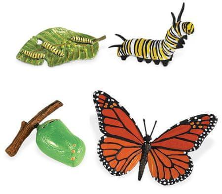 Safari Ltd. Cykl życia - Motyl | MALL.PL