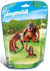 Playmobil Rodzina orangutanów 6648