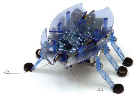 Hexbug Beetle modra