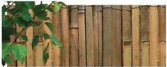 NOHEL GARDEN mata z bambusa 1 x 5 m