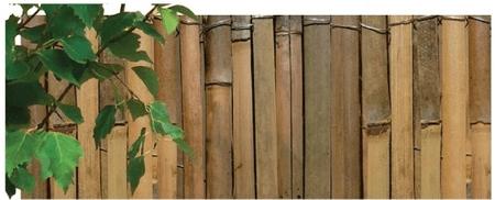 NOHEL GARDEN obloga iz bambusa, 1x5m