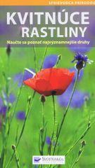 Kolektív autorov: Kvitnúce rastliny