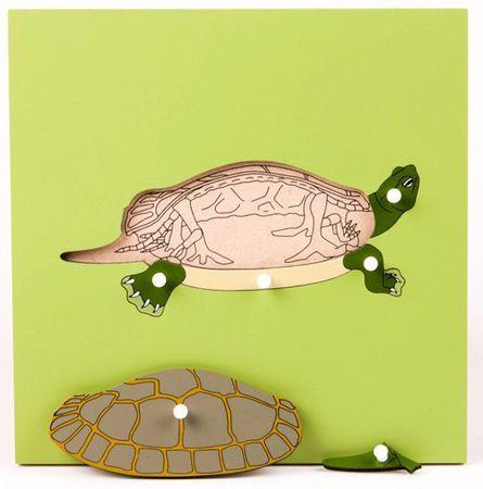 Montessori Puzzle csontvázzal - teknős