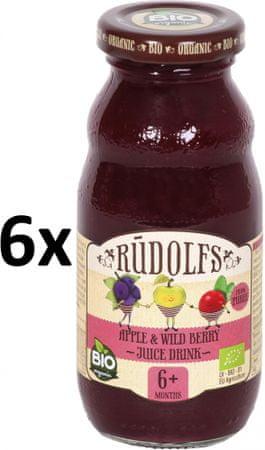 RUDOLFS BIO Dětský juice jablko+lesní plody - 6x190