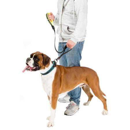 Ferplast Smycz dla psa Sport Dog Matic G25/120, niebieski