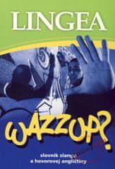 Kolektív: Wazzup? slovník slangu a hovorovej angličtiny