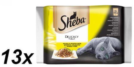 Sheba hrana za odrasle mačke Delicacy in Jelly, perutninska mešanica, 13 x (4 x 85 g)