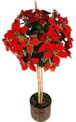 EverGreen Poinsettia stromček