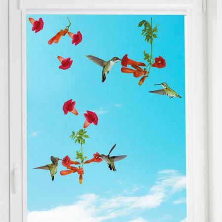 Crearreda okenska dekoracija Kolibri, S