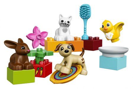 LEGO DUPLO® 10838 Kućni ljubimci