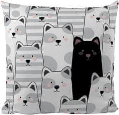 Butter Kings Vankúš Black Cat 50 x 50 cm