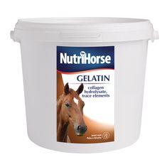 Nutrihorse Gelatin Étrendkiegészítő lovaknak, 3 kg