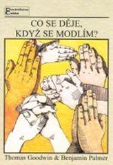 Goodwin T., Palmer B.,: Co se děje, když se modlím?