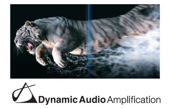 Dynamic Audio Amplification