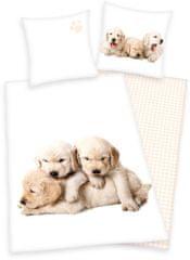 Herding posteljnina Puppies