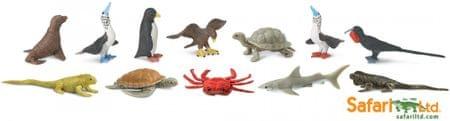 Safari Ltd. Tubus - Állatok Galapagosból