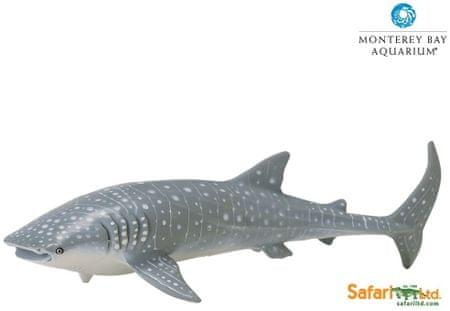 Safari Ltd. Cetcápa