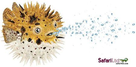 Safari Ltd. Tetraodon