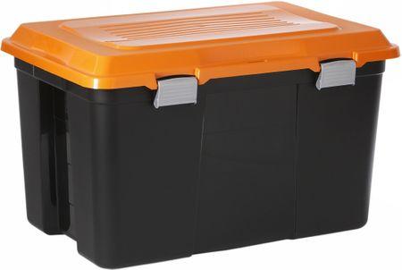 Rotho škatla za shranjevanje Packer 60 L