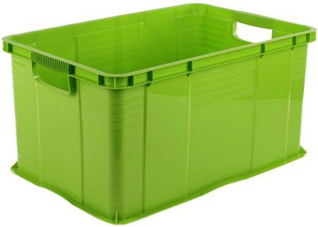 Rotho pojemnik Agilo, 55 l, zielony