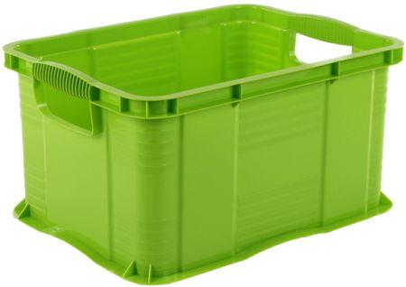Rotho škatla za shranjevanje Agilo 17,5l, zelena