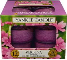 Yankee Candle świeczki typu Tealight Verbena, 12 x 9,8 g