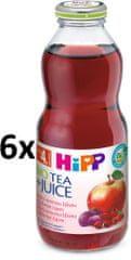 HiPP BIO Nápoj s ovocnou šťavou a šípkovým čajem 6 x 0,5l