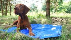 Argi Chladiaca podložka pre psov
