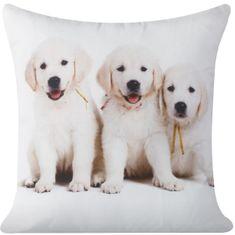 My Best Home Vankúš Friend Labrador 40x40 cm