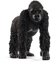 Schleich Gorilla lány 14771