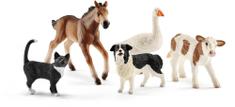 Schleich Állatok a farmról 5 db-os készlet 42386