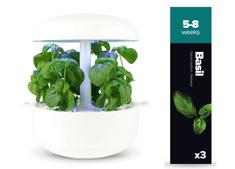 Plantui pótrekesz az okoskertbe - Bazsalikom, 3 db a csomagolásban