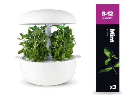 Plantui náplň pre inteligentný kvetináč - Mäta, 3ks v balení